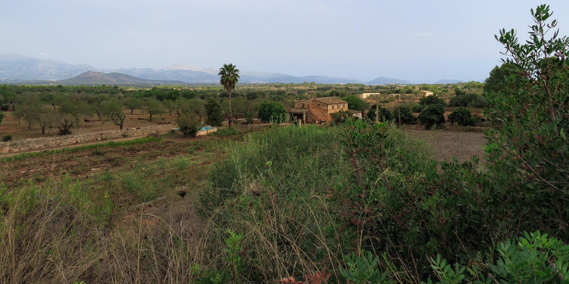 Thorsten-Mallorca-20180918-IMG 7018