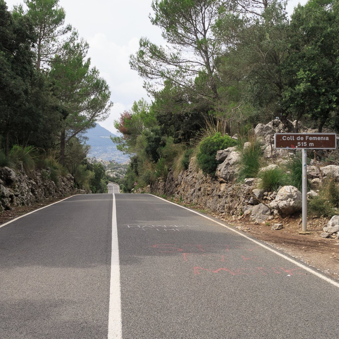 Thorsten-Mallorca-20180919-IMG 7072